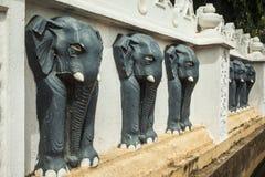 Zwarte olifanten op tempelmuur Stock Afbeeldingen