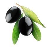 Zwarte olijven royalty-vrije stock foto