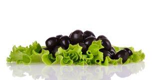 Zwarte olijven op groene salade stock foto's