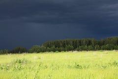 Zwarte onweerswolken over een de zomer groene weide royalty-vrije stock foto