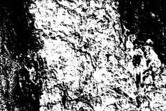Zwarte op witte doorstane textuur De oude oppervlakte van de boomschors Verontruste bekleding voor uitstekend effect royalty-vrije illustratie