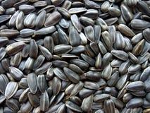 Zwarte organische de textuurachtergrond van zonnebloemzaden royalty-vrije stock afbeeldingen