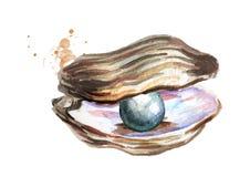 Zwarte parel in shell Hand getrokken die waterverfillustratie op witte achtergrond wordt geïsoleerd Royalty-vrije Stock Foto