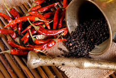 Zwarte peper in een emmer en een laurierblad Royalty-vrije Stock Foto's