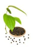 Zwarte peper in een Geïsoleerdew Kom Royalty-vrije Stock Afbeelding