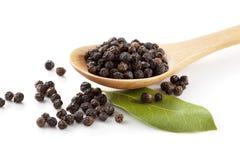 Zwarte peper en laurier Stock Foto