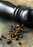 Zwarte peper en zwarte peper-molen Stock Afbeeldingen
