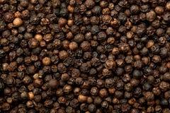 Zwarte peperbollen Royalty-vrije Stock Afbeeldingen