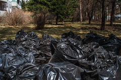 Zwarte plastic vuilniszak Royalty-vrije Stock Foto's