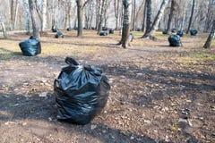 Zwarte plastic vuilniszakken in het park, de lente het schoonmaken Bladeren en huisvuil in de zakken Royalty-vrije Stock Fotografie