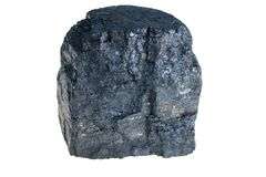 Zwarte Poolse steenkool Stock Fotografie