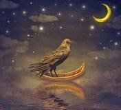 Zwarte Raaf in een boot bij de rivier magische nacht Stock Foto