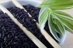 Zwarte rijst stock fotografie