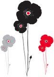 Zwarte, rode en grijze papaver Stock Fotografie