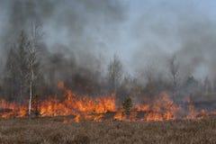 Zwarte rook en rode vlammen Royalty-vrije Stock Afbeelding