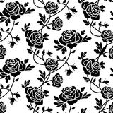 Zwarte rozen bij wit Stock Fotografie