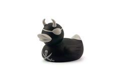 Zwarte rubbereendpiraat Royalty-vrije Stock Foto's