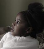 Zwarte Schoonheid Royalty-vrije Stock Foto