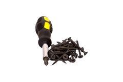 Zwarte schroef en schroevedraaier Royalty-vrije Stock Foto