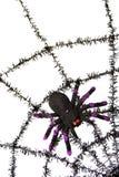 Zwarte spiderweb Stock Afbeeldingen