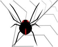 Zwarte spin Stock Afbeelding