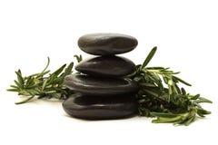 Zwarte stenen met groene bladeren Stock Fotografie