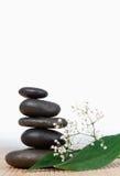 Zwarte stenenstapel en kleine witte bloemen Royalty-vrije Stock Fotografie