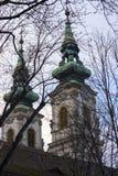 Zwarte takken van bomen op de achtergrond van de twee koepels van de Katholieke Kerk van St Anne in Boedapest, op de rechteroever stock fotografie