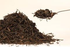 Zwarte thee royalty-vrije stock foto