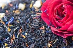 Zwarte thee Stock Foto