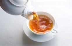 Zwarte thee stock fotografie