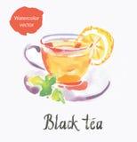 Zwarte thee stock illustratie