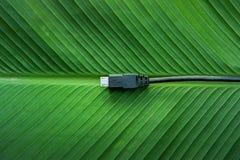 Zwarte USB-kabel op groene bladeren Stock Afbeeldingen