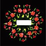 Zwarte van de papaverkleur banner als achtergrond Royalty-vrije Stock Foto
