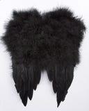 Zwarte vleugels Stock Foto's