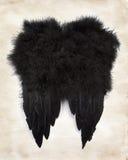 Zwarte vleugels op papier Royalty-vrije Stock Foto's