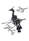 Zwarte Vogel & Oosterse kers Stock Foto