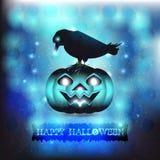 Zwarte vogel en Halloween-pompoen Stock Fotografie