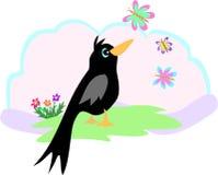 Zwarte Vogel en Vlinder Stock Foto's