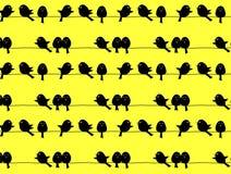 Zwarte vogels op gele achtergrond, herhaald patroon Stock Afbeelding
