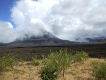 Zwarte vulkaankegel met groene bomen op lavagebied Stock Foto