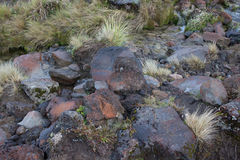Zwarte vulkanische rotsen Stock Afbeelding