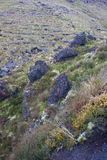 Zwarte vulkanische rotsen Stock Foto's