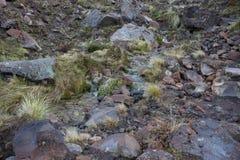 Zwarte vulkanische rotsen Royalty-vrije Stock Afbeeldingen