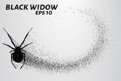 Zwarte weduwe van de deeltjes Het silhouet van de zwarte weduwe van kleine cirkels Vector illustratie Stock Afbeelding