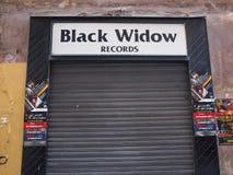 Zwarte weduweverslagen Stock Foto