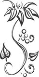 Zwarte Wijnstok Royalty-vrije Stock Afbeelding