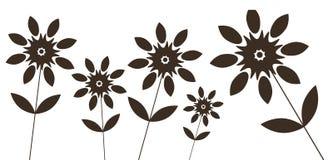 Zwarte wilde bloem Stock Foto