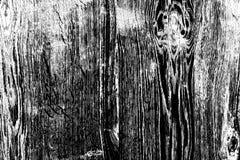 Zwarte wilde eiken structuur Royalty-vrije Stock Fotografie