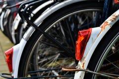 Zwarte Witte Wielen van fietsenrek de Lichtrode Banden Stock Foto's